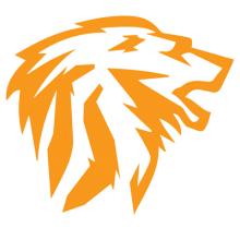 NetManageIT Solutions Logo